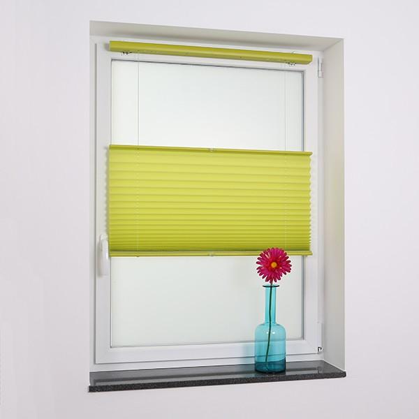 Plissee schnurlos tageslicht gr n fenster plissee for Fenster shop