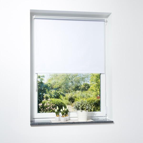 Fenster verdunkelungsrollo wei viele gr en for Fenster shop