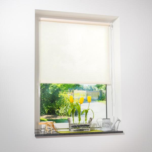 fenster rollo beige viele gr en fensterrollo rollos. Black Bedroom Furniture Sets. Home Design Ideas